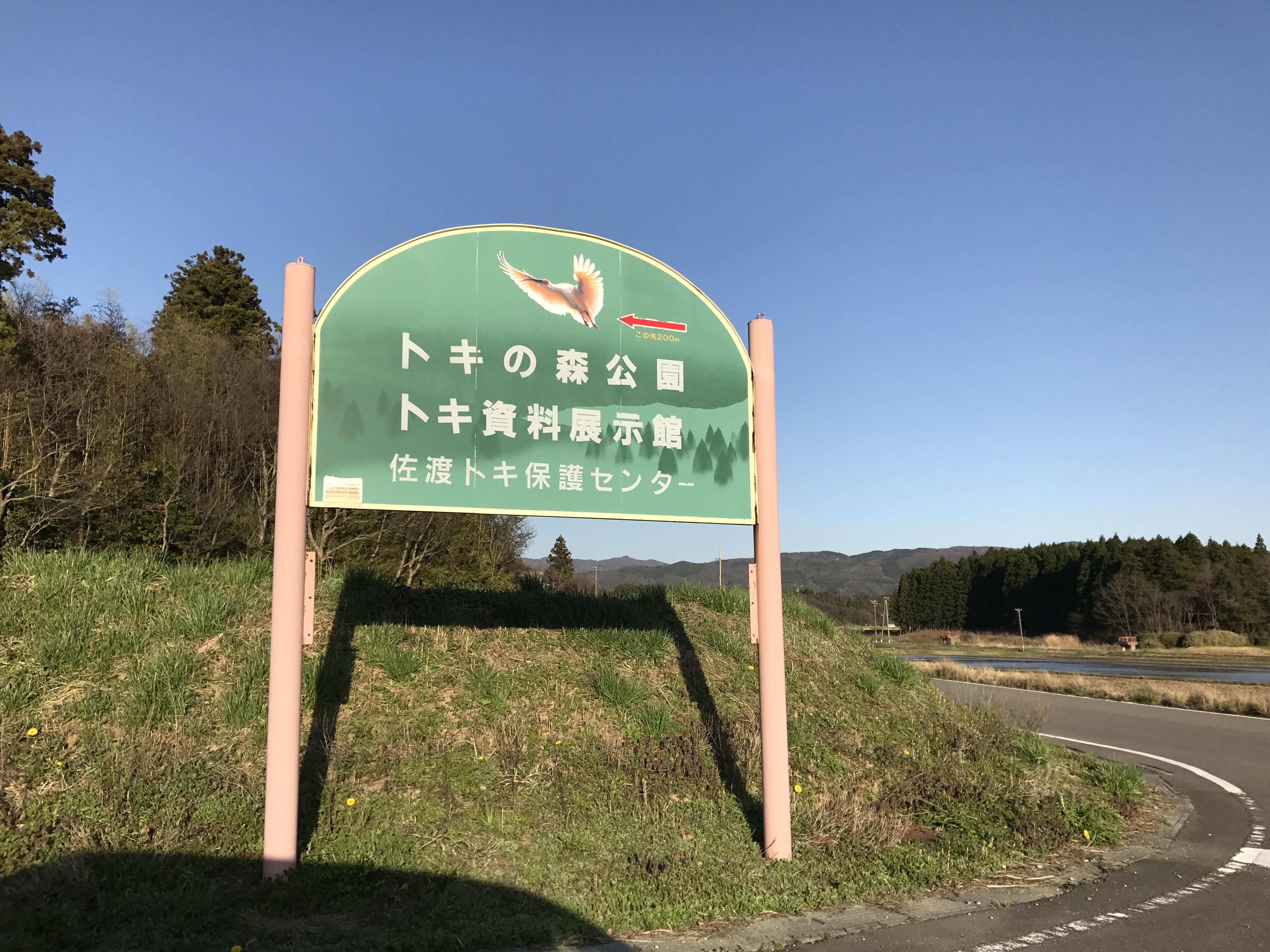tokinomori