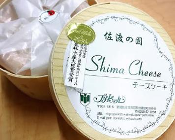 shimacheese
